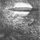 Ж. Верн— «20000 лье под водой»